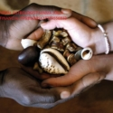 Pretoria Ancestral Powerful Traditional Sangoma To Bring Back Lost Lover In South Africa-USA-Dubai